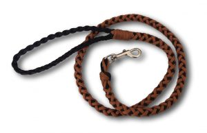 Paracord dog lead 8 strand