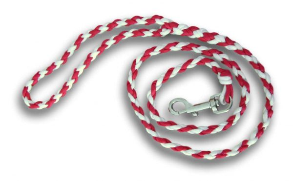 Paracord dog lead red and white