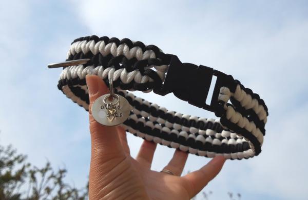 Bespoke paracord dog collar