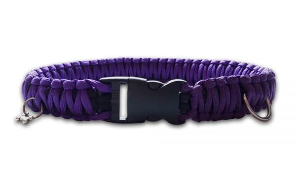 King cobra paracord dog collar