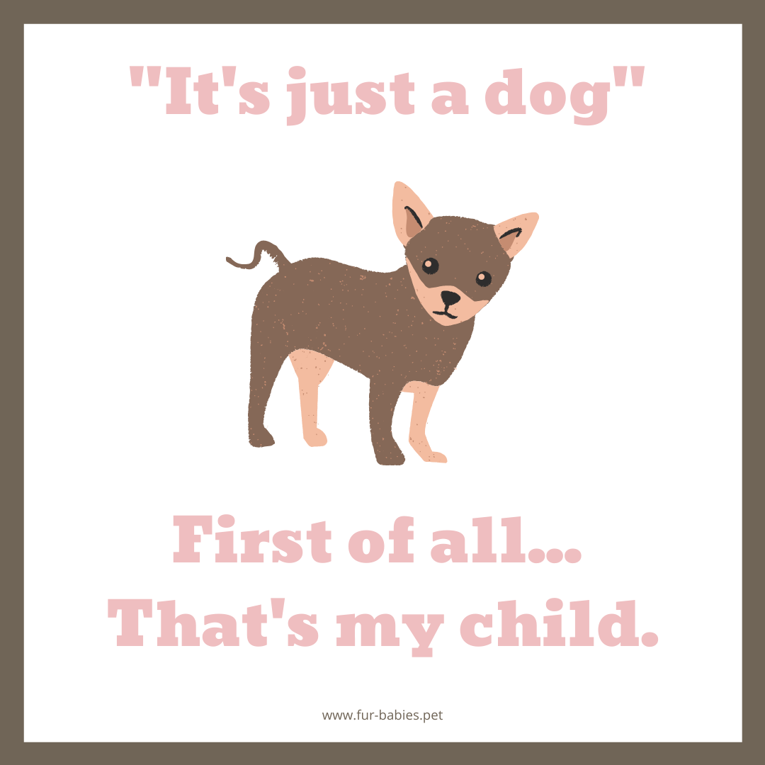 dog quote Just a dog graphic