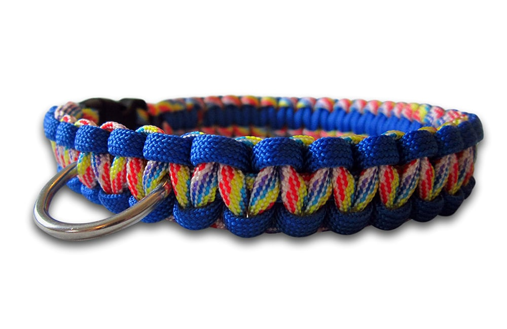 paracord dog collar cobra knot rainbow