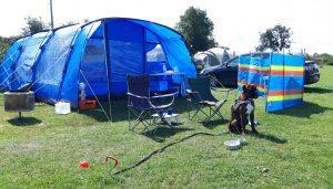 Tethered dog camping